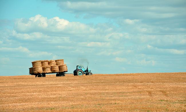 L'industrie agro-alimentaire, avec son utilisation d'OGM de céréales hybrides, a contribué a affaiblir le système digestif des populations. La perméabilité intestinale est un problème fréquent, cause de nombreux soucis de santé. Le docteur Marc François Paya nous l'explique, et nous parle d'une solution 100 % naturelle : le Totum, du groupe SynerJ-Health.