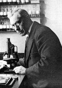 Beijerinck entdeckte Chlorella 1890, fand es aber unverdaulich. Die AFA des Klamath-Sees (AlphaOne SynerJ-Health, populär gemacht von Jacques Prunier) wird seit Jahrtausenden auf natürliche Weise verwendet.